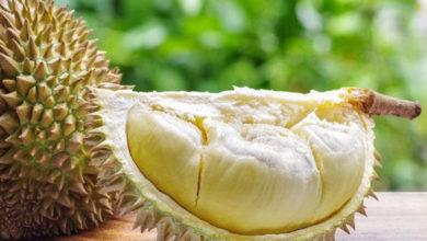 Photo of Cara Jitu Memilih Durian agar Tidak Tertipu